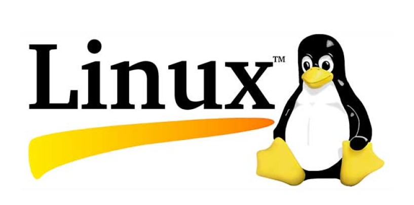 Linux, scoprire i DNS in uso da command line