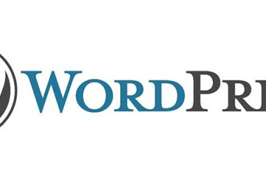 WordPress segreto: options.php