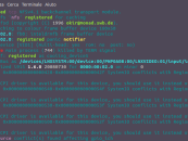 Linux console: Colorare i log